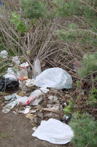 plastic bags pollute san diego