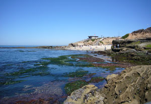 la-jolla-tide-pools-s